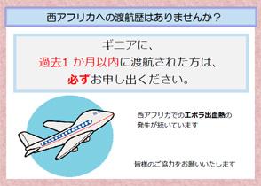 渡航歴確認シート 飛行機編