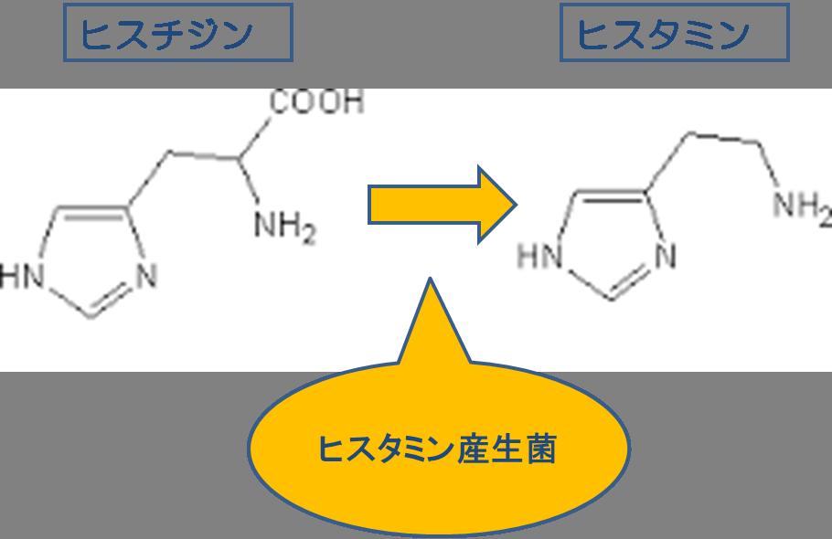 ヒスタミン
